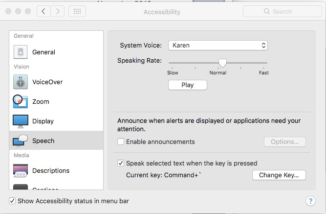 Ghotit Speech settings